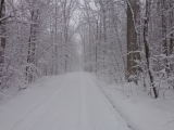 <h5>The road less traveled!</h5><p>Winter in Vermont.																																																																				</p>